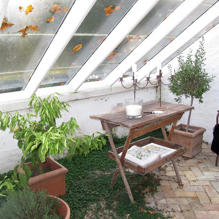 grønne fingre krydderurter vinduer orangeri drivhus vinterhave windows orangery