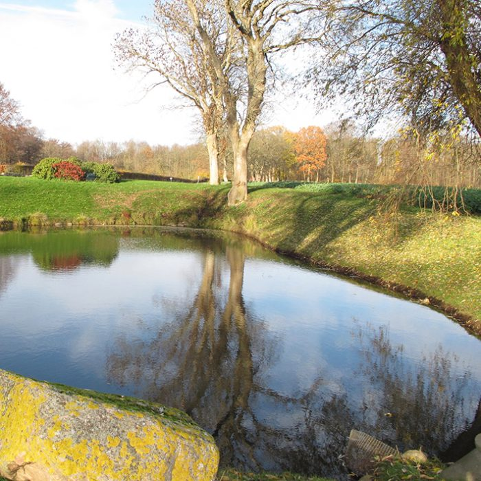 gyldne farver sø efterår lake garden park colours autumn