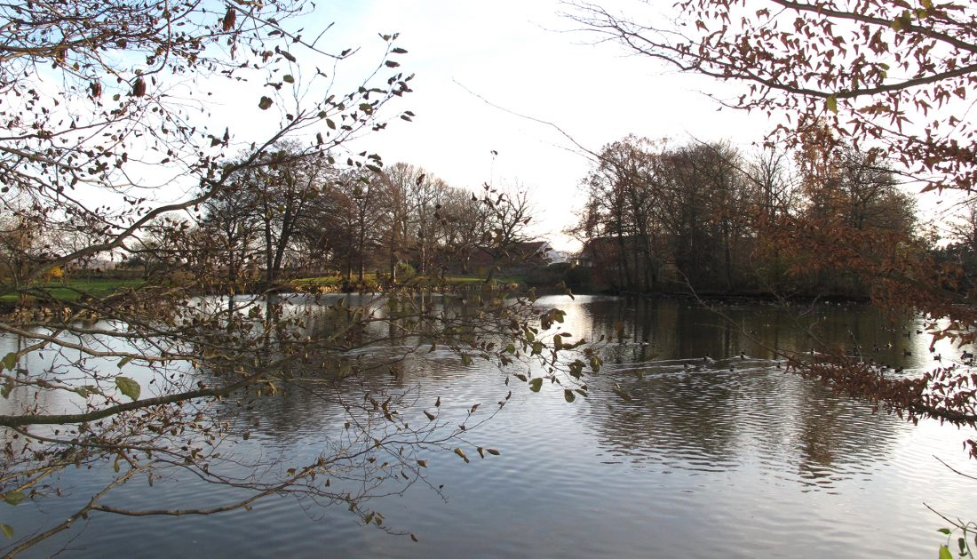 natur flintholm gods sø landskab naturlige omgivelser