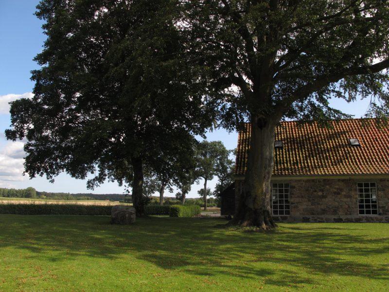 gammel have, park, træer, Dank Generationsskifte, stenhus, stonehouse, trees