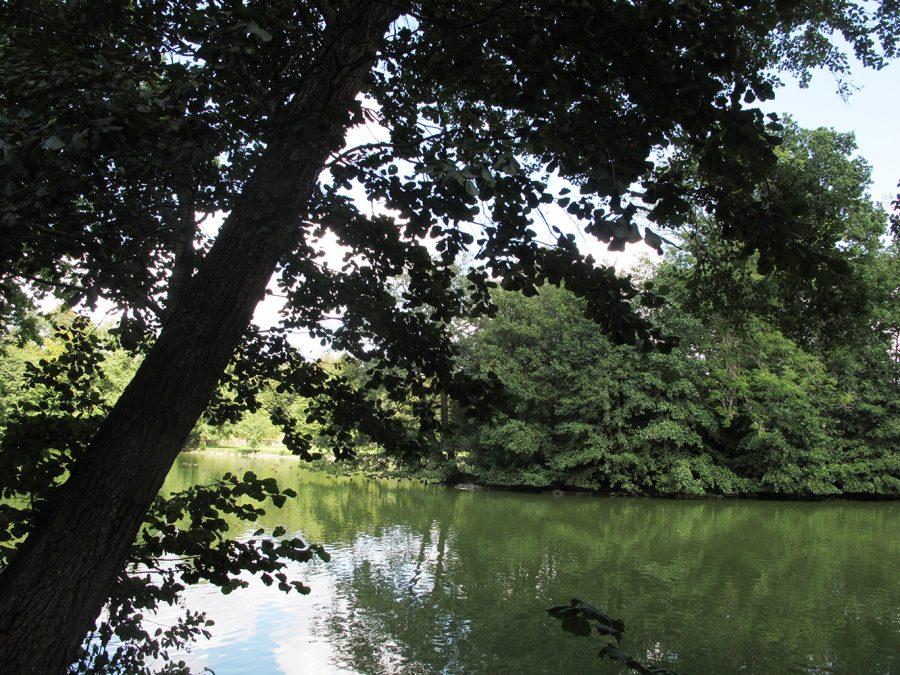 Sø, udsigt, lake, view